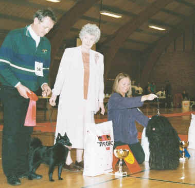 Mrs. Ann Arch - Best In Show Judge Crufts 2001
