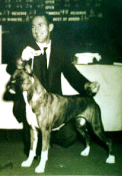 HANDLER JOE GREGORY AND BOXER, PAINTED LADY