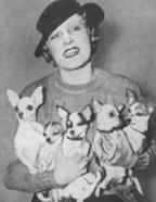 Chihuahuas, circa 1934, with Florence Clark